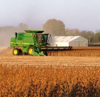 harvest soy col fall